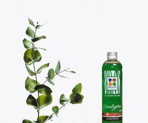 Eucalyptus Aromageur